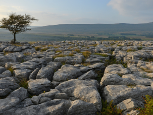 Discover Malham Cove In The Yorkshire Dales