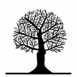 s_tree_crownreduction-a.jpg