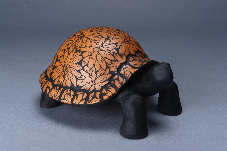 199- Daisy turtle