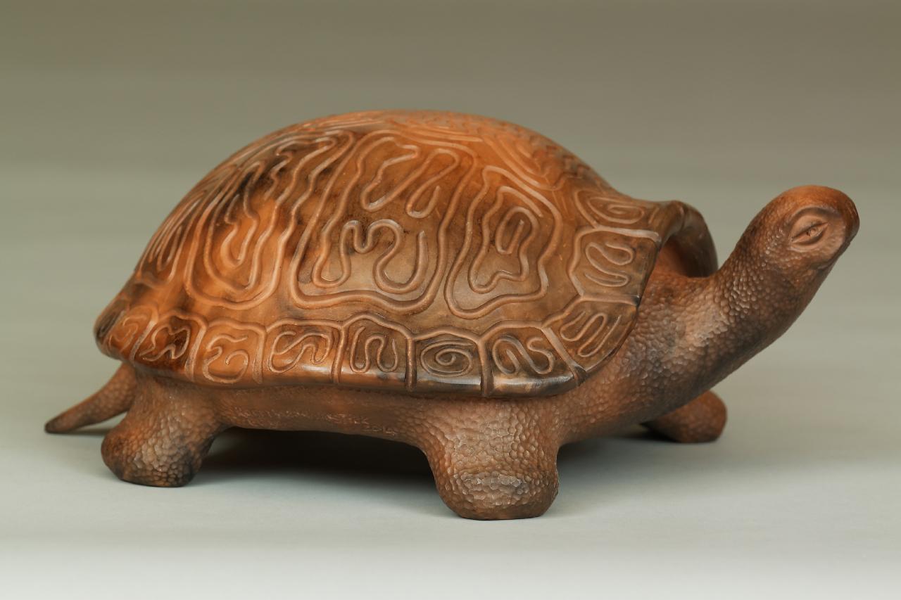 113-Turtle