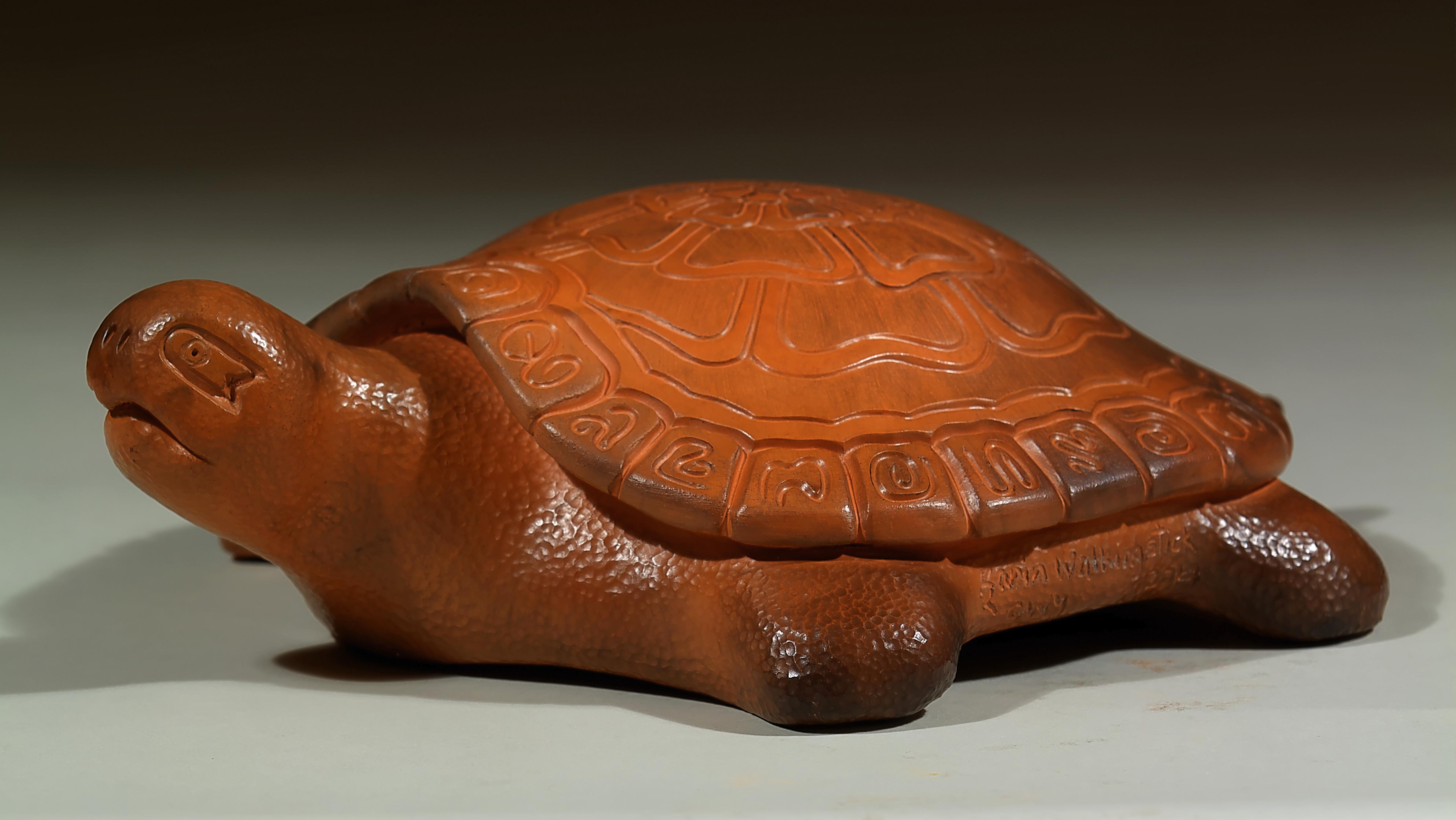 072-Flower Turtle