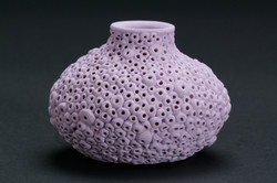 157- Purple Barnacles