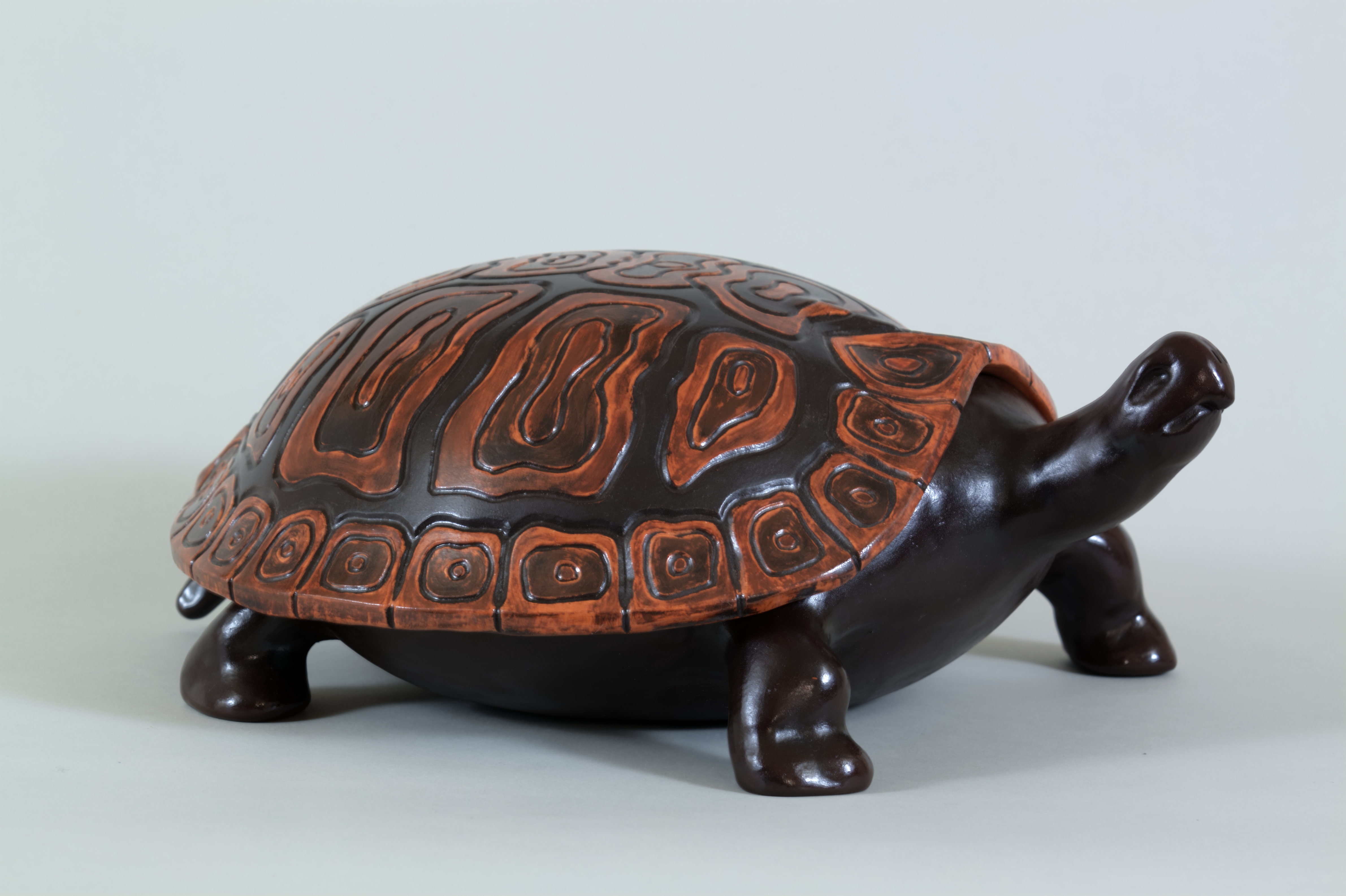 046_Turtle with removable shell