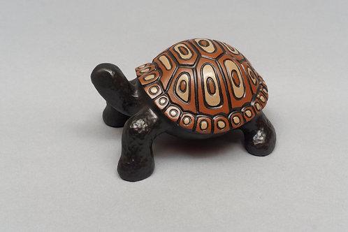 Painted Turtle Jr.
