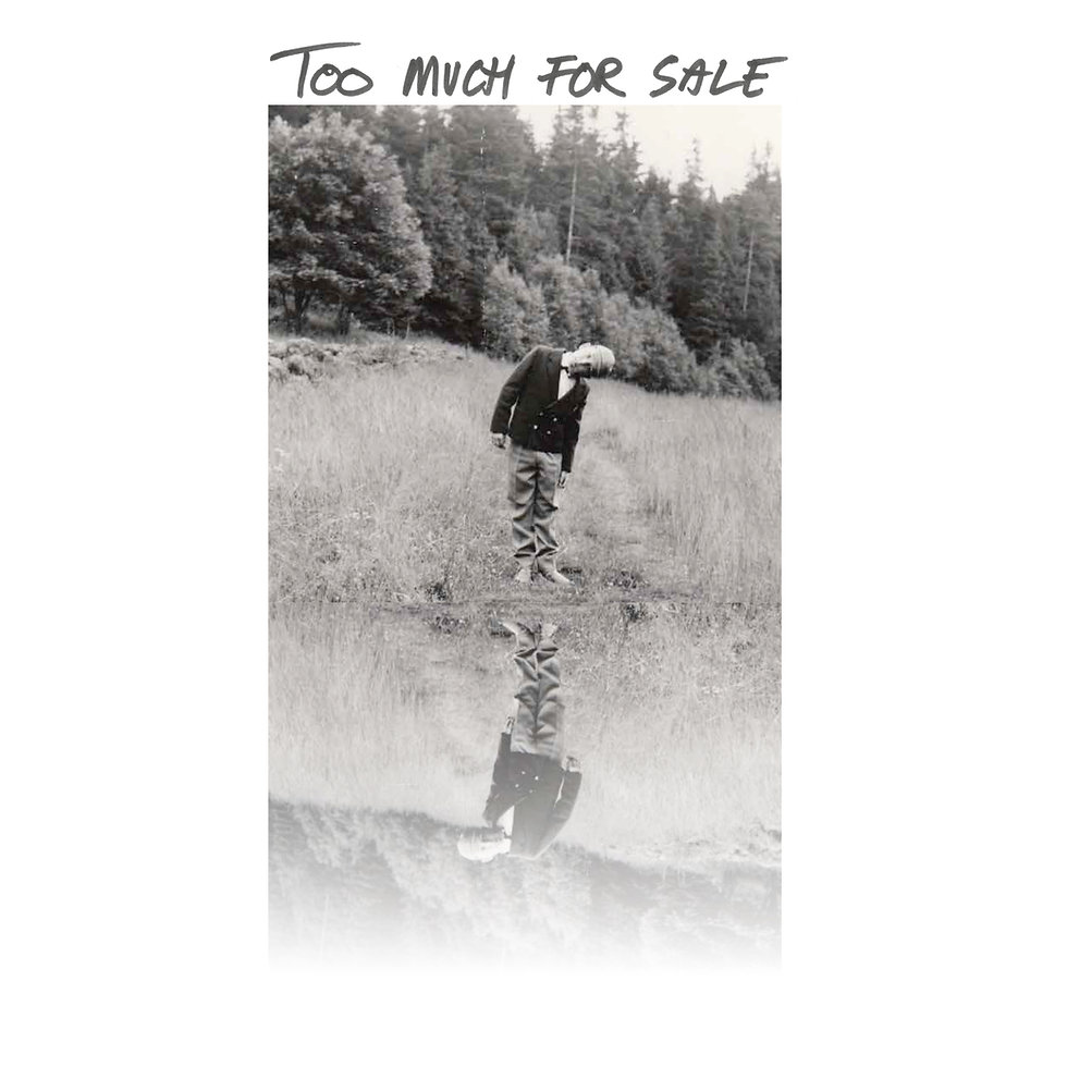 Too much for sale cover.jpeg