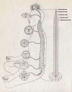 corpo-sottile
