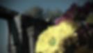 תמונה מתוך קליפ בת מצווה בפארק כורזים