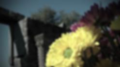 קטע מתוך קליפ בת מצווה שצולם בפארק כורזים