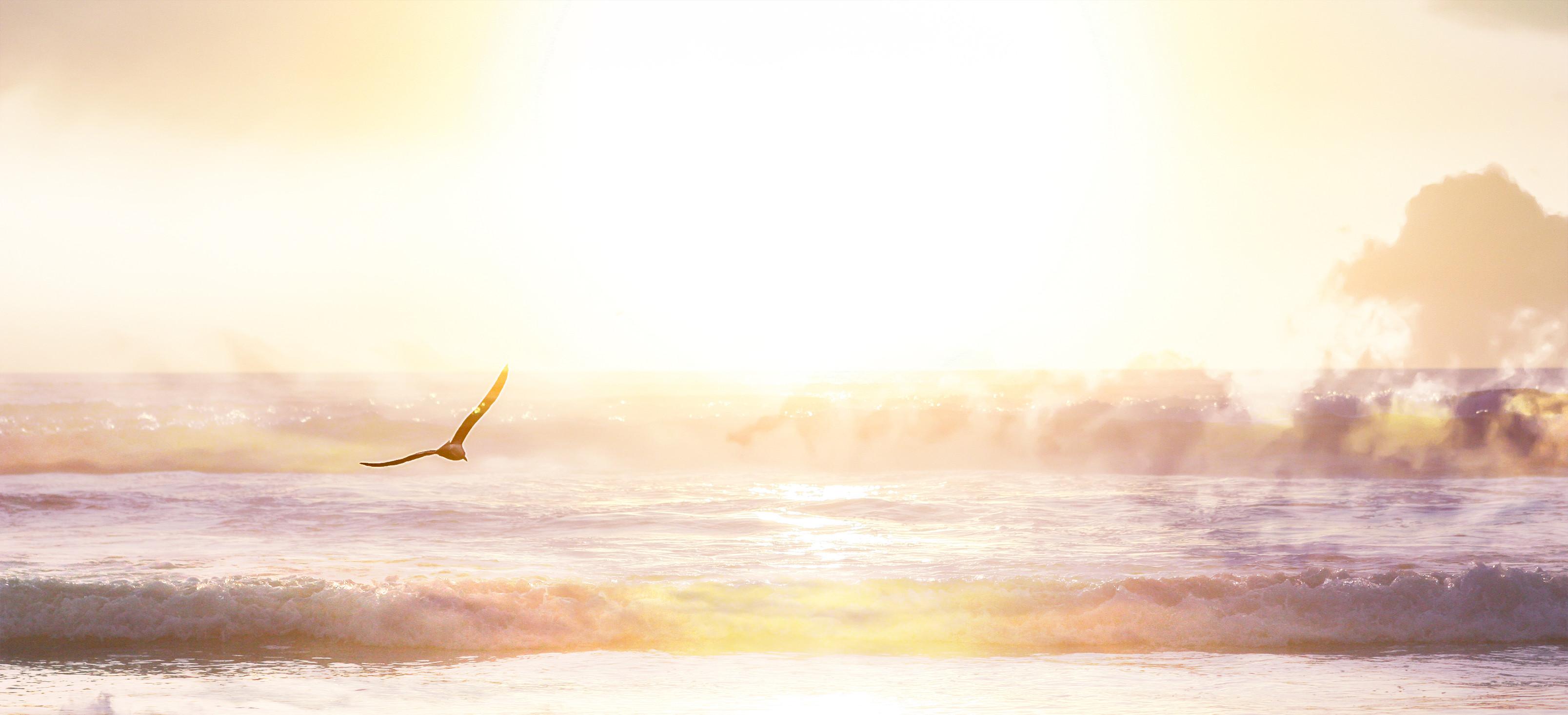 Seelenreise zur geistigen Heimat