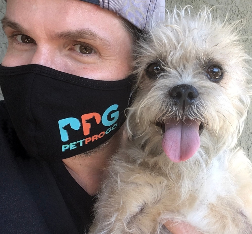 A day in the life of a Pet Pro at PetProGo