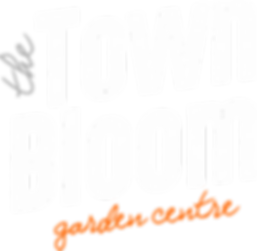 town bloom logo wht (2).png