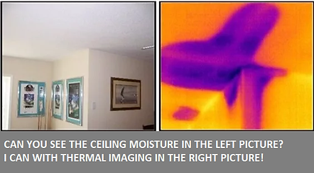 Wet Ceiling.png