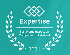 Expertise: Best Home Inspection Companies 2021