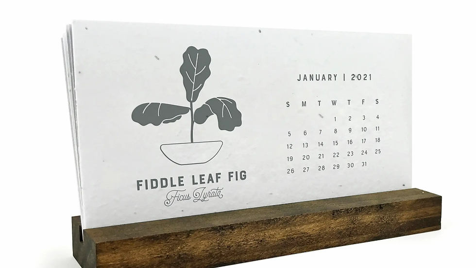 2021 House Plantable Seed Desk Calendar