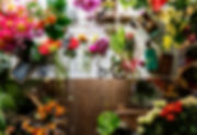 flowers-on-the-table-for-arrangement-P49