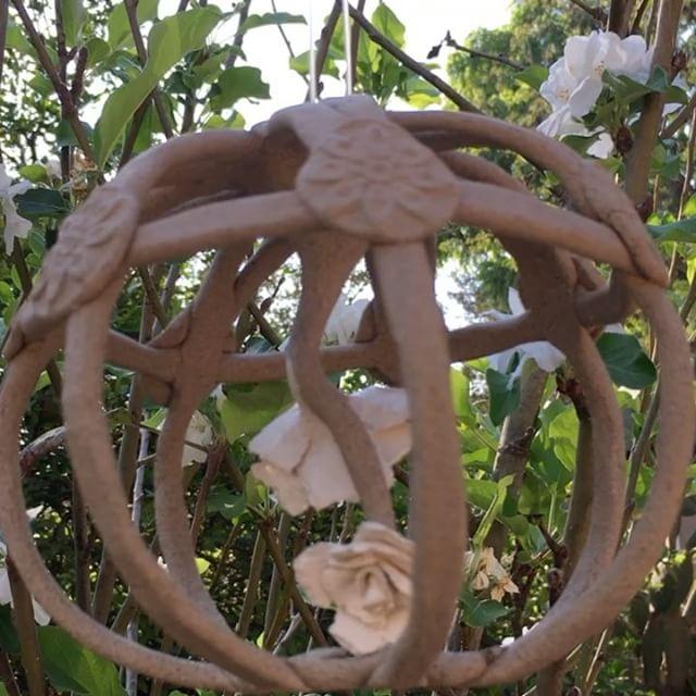 #nature #paperclay #clayart #ceramics #stoneware #escultura #ceramicart