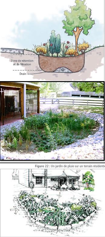 cs-jardinpluie2.png