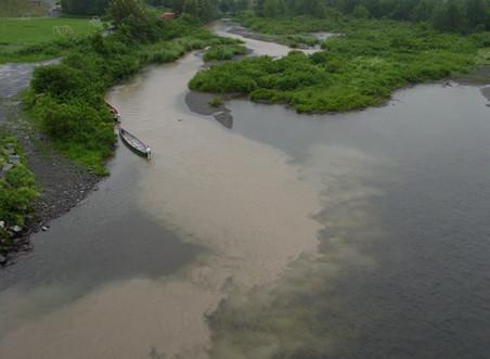 Capsule 3: Les problèmes des eaux de ruissellement