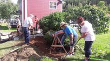 Cette semaine, ensemble les citoyens de la municipalité de Matapédia font leur jardin de pluie pour