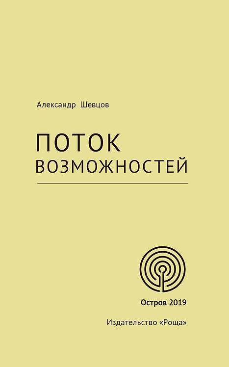 Шевцов А. Поток возможностей