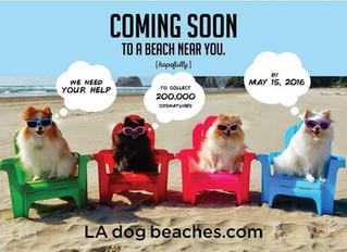 LA NEEDS DOG FRIENDLY BEACHES