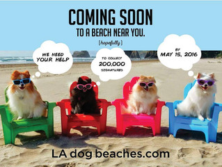LA NEEDS DOG FRIENDLY BEACHES