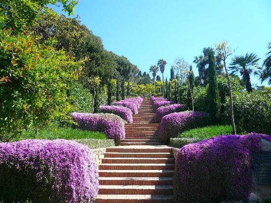 marimurtra-botanical