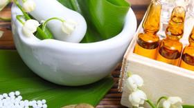 Medicina, Veterinária, Odontologia, Farmácia...na Homeopatia?