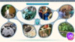 waterwebpage2020.jpg