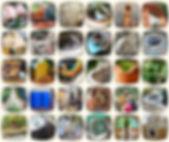 lehwebsite-cream.jpg