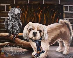 Dog and a Bird