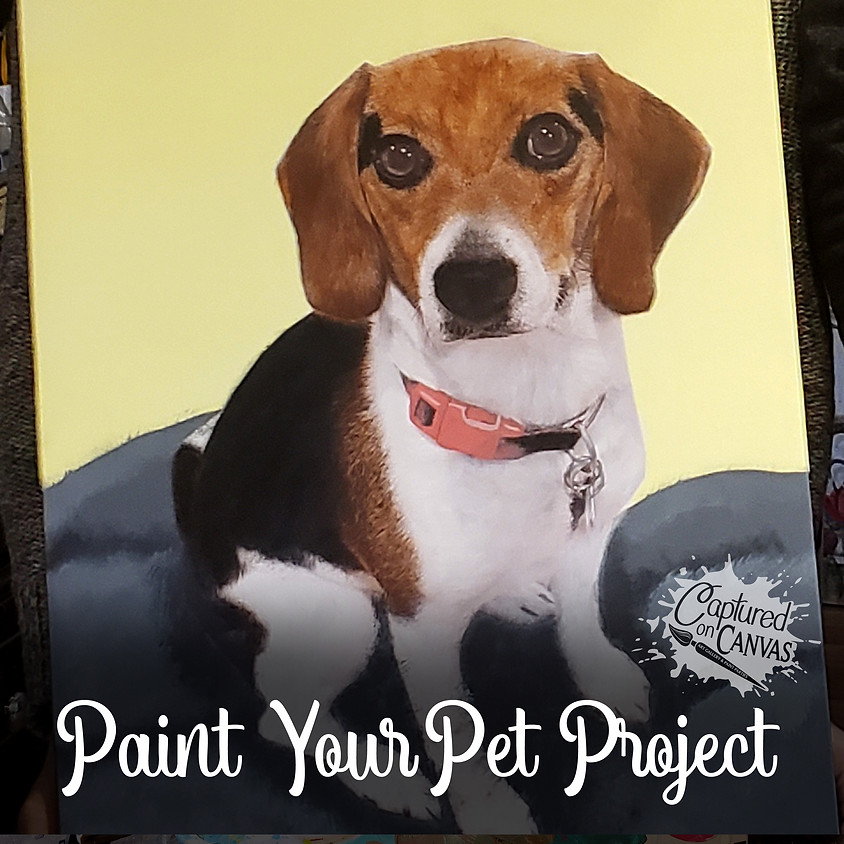 Paint Your Pet Project - Live or In-Studio