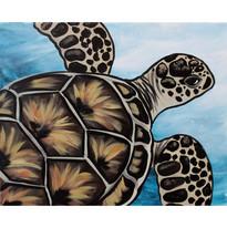 Sea Turtle_WIX
