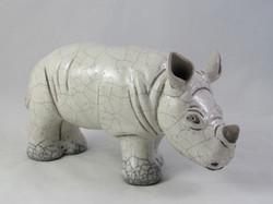 Rhino Ado