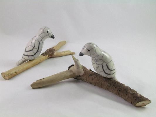 Oiseaux Blancs sur Bois Flotté