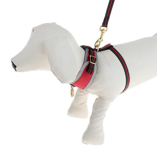 Комплект амуниции Dogness для кошек и собак до 5 кг