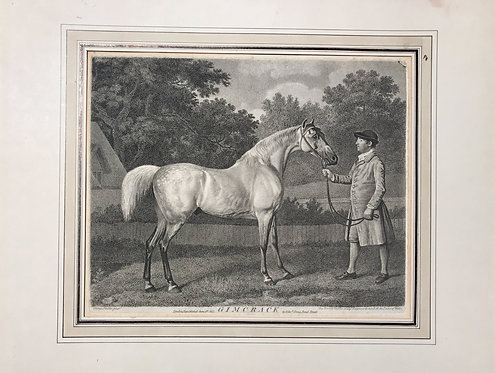 """George Townly Stubbs after George Stubbs """"Gimcrack"""""""