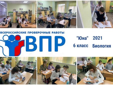 6 класс - Всероссийская проверочная работа по Биологии              (28 апреля 2021)