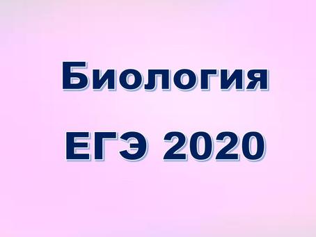 Результаты ЕГЭ 2020