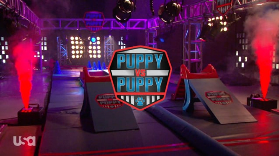 AMERICAN NINJA WARRIOR: PUPPY VS PUPPY | USA NETWORK