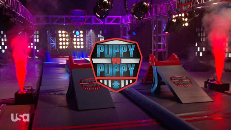 AMERICAN NINJA WARRIOR: PUPPY VS. PUPPY | USA NETWORK