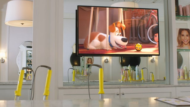 SECRET LIFE OF PETS - BARKBAR