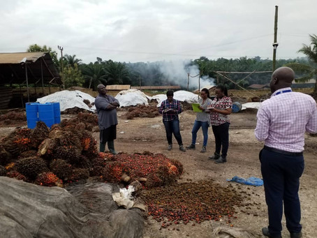 FDA Trains Environmental Health Officers On Enhancing Food Safety Along The Oil Palm Value Chain