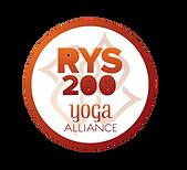 RYS 200 V3_edited.png