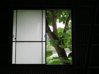 今週のアトリエ雑記(窓)