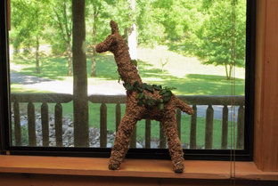 Small Giraffe Topiary - Planted