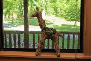 Small Giraffe Topiary - Planted
