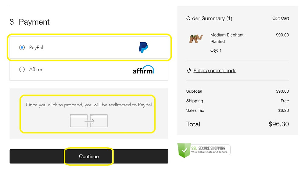 Checkout form with Paypal radio button selected.