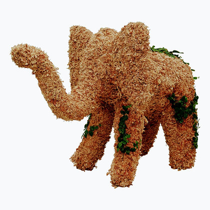 Extra Large Elephant - Planted