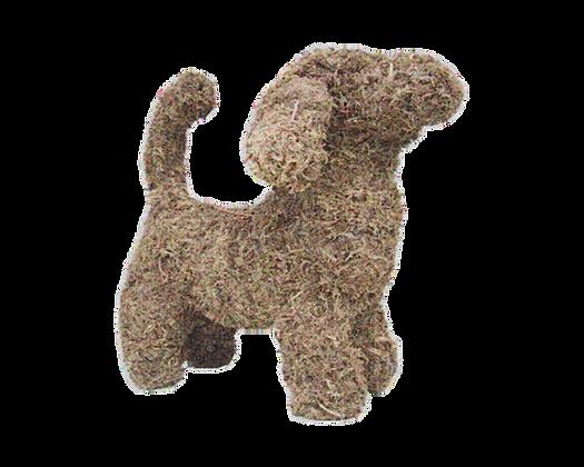 Dachshund - Stuffed